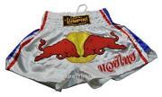 Kickboxing Shorts