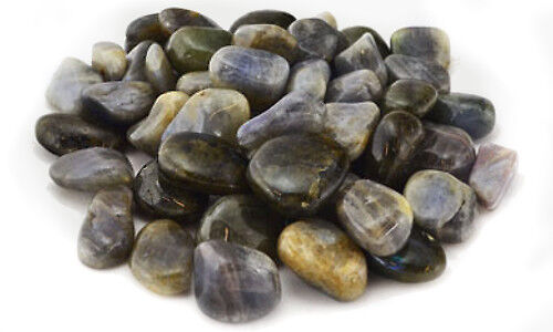 Bulk Lot 1 lb Labradorite Tumbled Stones Gemstones Chakra Reiki Crystal Healing