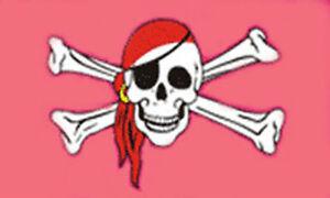 PINK-SKULL-and-CROSSBONES-FLAG-5-x-3-Princess-Pirate
