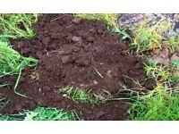 Soil - Free