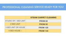 Professional steam cleaning service ready for you Bankstown Bankstown Area Preview