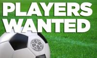 Looking for Adult Soccer Players ...