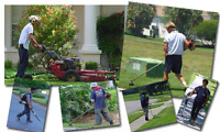 LAWN/YARD/DUMP/CLEANUP/MOVE/SMALLJOBS