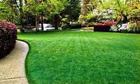 Spring Clean Up, Lawn Care 780 903-5929