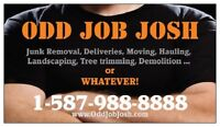 Demolition and Disposal! We are Exited to work for you!