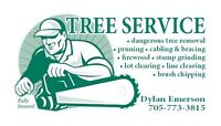 Fully insured free service
