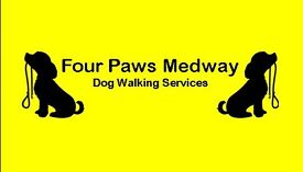 Four Paws Medway - Dog Walking Services & Home Visits for Strood, Rochester and Medway, Kent