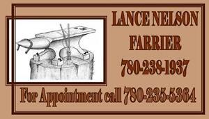 EXPERIENCED & RELIABLE FARRIER SERVICE