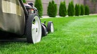 Commercial, Residential Lawn & Yard 780 903-5929