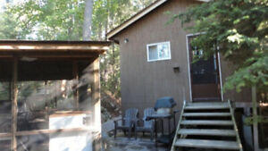 3 BEDROOM - CABIN, MOTOR BOAT,CANOE, HOT TUB, SAUNA