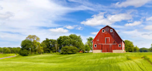 LOOKING FOR: country property to buy in Haldimand