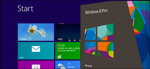 Windows 8.1 Professional 32/64-bit (French only)
