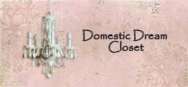 Domestic Dream Closet