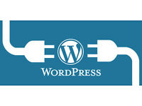 WordPress Plugin Development & Customisation