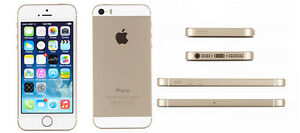 Apple iPhone 5S 16GB Rogers (Gold)