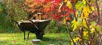 RESTORE YOUR OUTDOORS! Book your Fall Clean-up