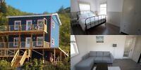 Seaside Vacation Rentals in Petty Harbour- mins from St. John's!
