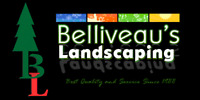 Landscaping \ Lawn Care