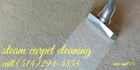 Steam carpet washing services