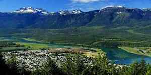 Looking for 1-2 acres in and around Revelstoke...