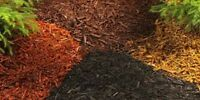 Garden Bed Mulch Installation - Lowest Price - Best Quality Work