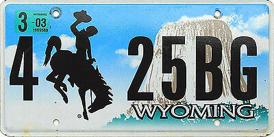 Wyoming DEVILS TOWER Flat License Plate - BRONCO HORSE COWBOY WY