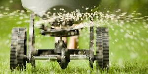 ***Lawn Aerating - This Weekend - ONLY $40*** Sarnia Sarnia Area image 2