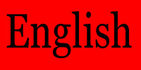 One-on-one conversational English / Conversation en anglais.