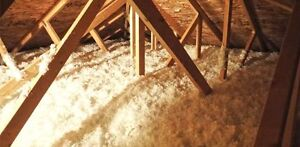 Free Attic Inspection-->Consultation and Advice is free By Attux London Ontario image 4