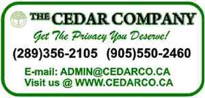 The Cedar Company - hedging cedars!