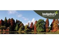 Weekend Cleaner - Bedgebury Pinetum/Cafe