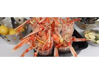 Sous Chef for Successful Seafood Restaurant in Argyll Fishing Village