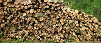 TOP QUALITY LOGGING & FIREWOOD $249 SPLIT 292-1422