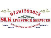 SLK Livestock services