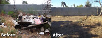 FREE QUOTE!!   LOOKING FOR A YARD CLEAN UP OR/AND JUNK REMOVAL?