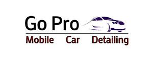 Mobile Car Detailing from Go Pro