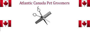 Attention Pet Groomers