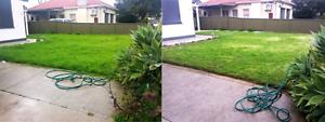 Mr Green's Professional Lawn Care & Garden Maintenance Success Cockburn Area Preview