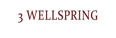 3 Wellspring