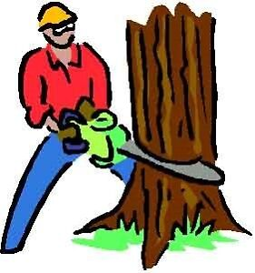 CARM'S TREE SERVICES!!!