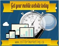 Develop Mobile Website and Mobile Applications for Entrepreneur