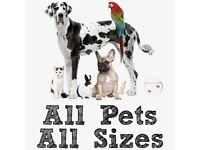 Pet sitting/walking/feeding services