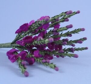 12-SCOTTISH-PURPLE-OR-WHITE-HEATHER-SPRIGS-WEDDING-FAVOUR-DECORATIONS-INVITES