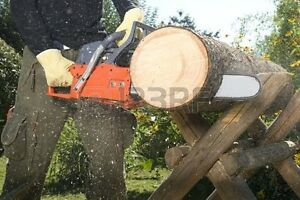 Chainsaw services/tree removal for hire, great rates! Williams Lake Cariboo Area image 2
