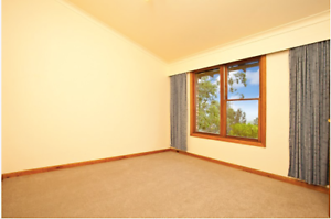 Peaceful Home in Elanora Heights Elanora Heights Pittwater Area Preview