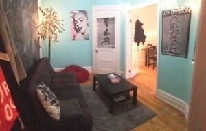 Roommate needed (apt. in the Plateau. Mont-Royal & St-Dominique)
