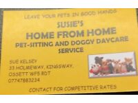 Susie's pet sitting services