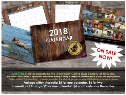 2018 Australian Cattle Dog Calendar