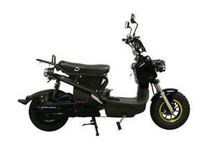 Electric Scooters & E-Bikes -NewStar has the Largest Selection St. John's Newfoundland image 3