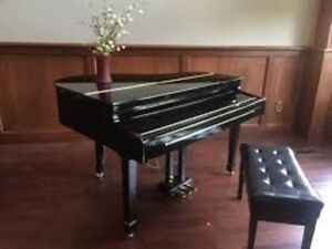 Looking for Adagio GDP8800 digital piano
